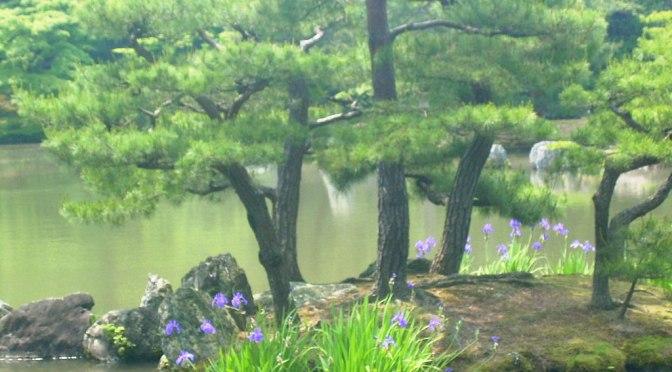 Meditation mit den Gokai